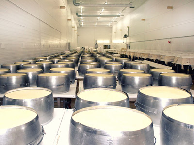 Gran Gravine hard cheese forming room